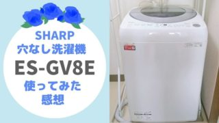 シャープ SHARP 洗濯機 ES-GV8E 穴なし洗濯槽